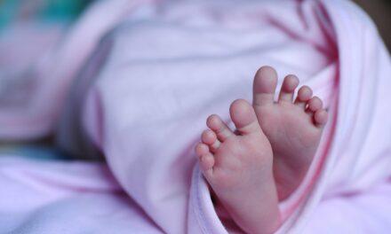 Babywippe elektrisch – JUNGLE Baby Schaukelwippe mit Vibration