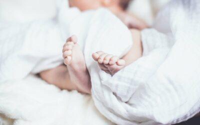 Baby Vivo Laufgitter